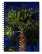 Palm Tree At Night Spiral Notebook