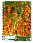 Palm Tree Fruit 1 Spiral Notebook