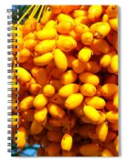 Palm Tree Fruit 2 Spiral Notebook