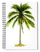 Palm Tree Number 2 Spiral Notebook