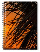 Palm Tree Sunset Spiral Notebook