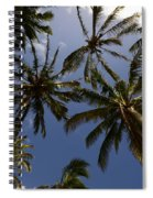 Palm Trees 3 Spiral Notebook