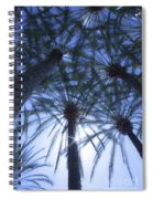 Palm Trees In The Sun Spiral Notebook