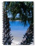 Palm Trees Of Gulf Breeze Spiral Notebook
