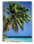 Palm Trees On Little Palm Island Filtered Spiral Notebook