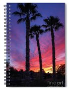 Palm Trees Sunset Spiral Notebook