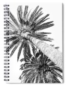 Palm Tree White Spiral Notebook
