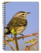 Palm Warbler Spiral Notebook