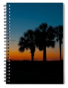 Palms At Clear Dawn Spiral Notebook