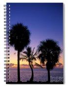 Palms At Sunrise Spiral Notebook