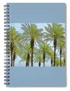 Palms Spiral Notebook