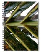 Palms E  Spiral Notebook
