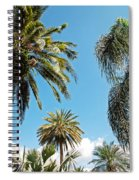 Palms In The Sky Spiral Notebook