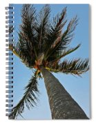 Palms Over My Head Spiral Notebook