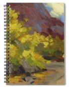 Palo Verde Trees Spiral Notebook