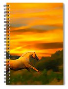 Palomino Pal At Sundown Spiral Notebook