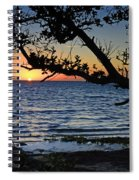 Pamlico Sound Through The Trees Spiral Notebook
