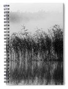 Pampas Grass In Fog Spiral Notebook