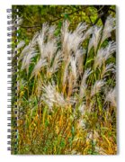 Pampas Grass Spiral Notebook