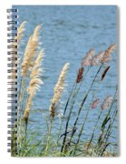 Pampas On The Lake Spiral Notebook