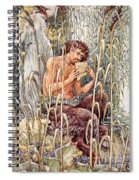 Pan Playing His Pipes Spiral Notebook