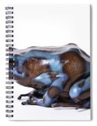 Panamanian Green And Black Poison Dart Spiral Notebook