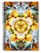 Panorama Carina Nebula Vi Spiral Notebook