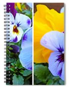 Pansies In Stereo Spiral Notebook
