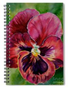 Pansy Play Spiral Notebook