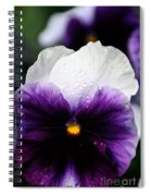 Pansy Tears Spiral Notebook