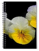 Pansy Trio Spiral Notebook