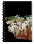 Pantenal Cows Spiral Notebook