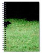 Papa Bear Spiral Notebook