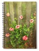 Papaver Orientale 3 Spiral Notebook