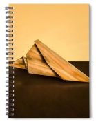 Paper Airplanes Of Wood 2 Spiral Notebook