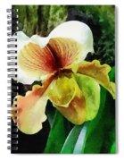 Paph Hellas Westonbirt Orchid Spiral Notebook