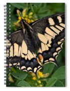 Papilio Machaon Butterfly Sitting On The Lucerne Plant Spiral Notebook