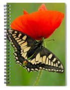 Papilio Machaon Butterfly Sitting On A Red Poppy Spiral Notebook