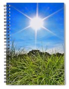 Papyrus In The Sun Spiral Notebook
