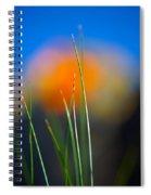 Papyrus Spiral Notebook