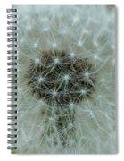 Parachutes Spiral Notebook