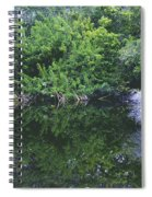 Paradise Pond Spiral Notebook