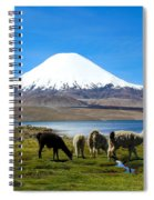 Parinacota Volcano Lake Chungara Chile Spiral Notebook