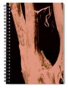 Parish In The Night Spiral Notebook