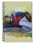 Park Bench Sleeper Spiral Notebook