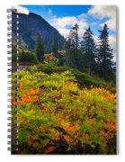 Park Butte Fall Color Spiral Notebook