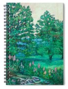 Park Road In Radford Spiral Notebook