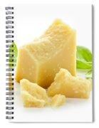 Parmesan Cheese Spiral Notebook