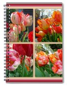 Parrot Tulips In Springtime Philadelphia Spiral Notebook
