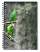 Parrots In The Rain Spiral Notebook